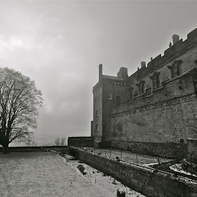 Sterling Castle by Ibrahim Johan - Buildings & Architecture Public & Historical ( scotland, b&w, william wallace, braveheart )