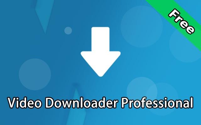 Professional video downloader