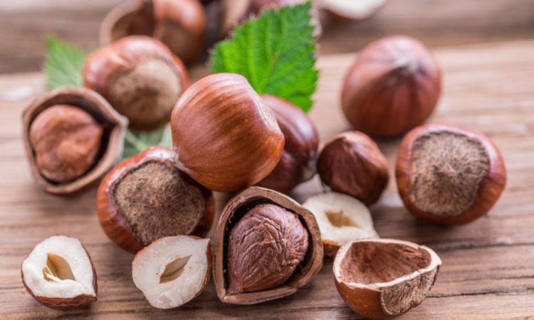 Image result for Hazelnut