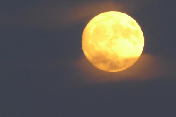 Luna di Piera