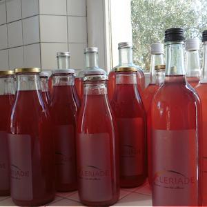 Le vin d'orange en chambre d'hôte l'Esclériade en Provence