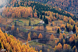 Photo: I colori dell'autunno.
