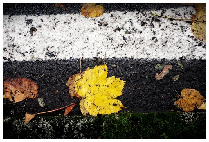 Tracce d'autunno di hylablu