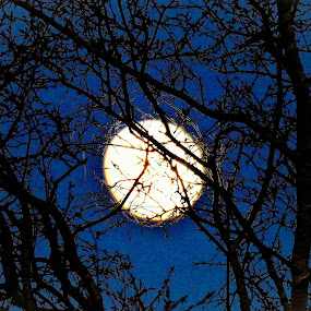 Moon by Richard Lawes - Novices Only Landscapes