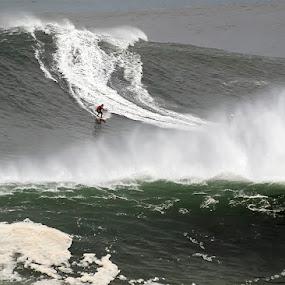 Garrett McNamara by José Vieira - Sports & Fitness Surfing ( garrett mcnamara )