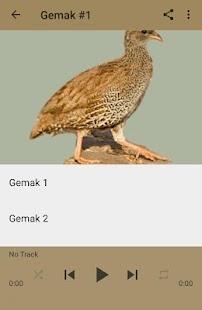 Masteran Burung Gemak - náhled