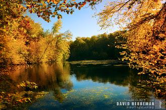 Photo: Autumn 2011