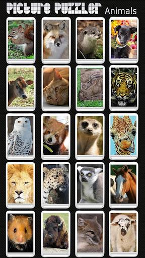 Picture Puzzler - Animals