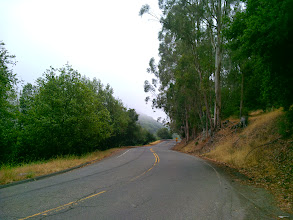 "Photo: Here is the same stretch of road the HCN picture was deliberately taken to hide the ""clear-cut forest"" on the left. Pictures of trees just don't support the ""clear-cut forest"" narrative they ar spinning."