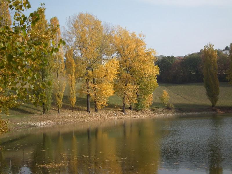 Tavolozza d'autunno di Giò Volpi