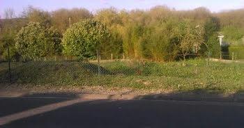 terrain à Dompierre-sur-Authie (80)