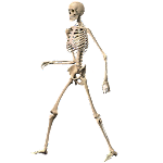 Skeleton Ragdoll, Walking dead Icon