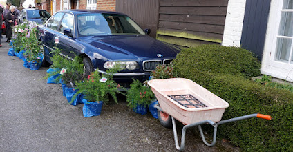 Photo: THE LATEST IN FRONT GARDEN LANDSCAPING