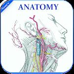 Gray's Anatomy - Atlas    Offline    Free 1.7