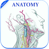 Gray's Anatomy - Atlas || Offline || Free