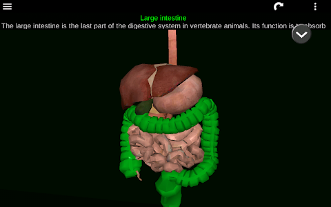 Organs 3D (Anatomy) Android | Appicted.me