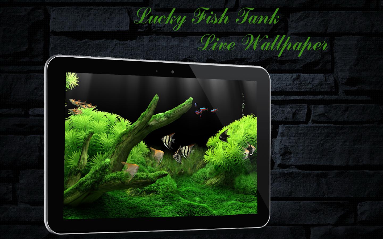 Fish aquarium and good luck - Lucky Fish Tank Livewallpaper Screenshot