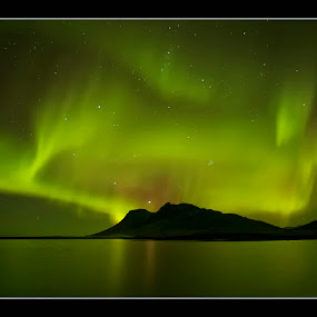 Aurora´s Dance by Þorsteinn H. Ingibergsson - Backgrounds Nature