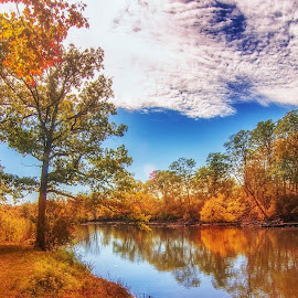 Last day of Autumn by Gene Brumer - Landscapes Waterscapes ( sky, leafes, clouds, river, trees, water )