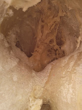 Photo: disolución del poliuretano con disolvente