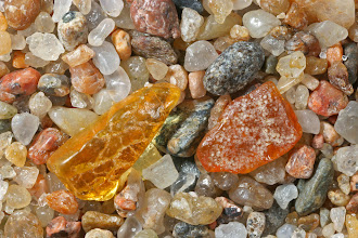 Photo: Juodkrante Beach, Curonian Spit, Lithuania -fossil amber- LPK-337-a-IMG_4408