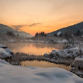 Frozen morning by Bor Rojnik - Landscapes Sunsets & Sunrises ( reflection, winter, upper carniola, blue hour, slovenia, year, day, sunrise, julian alps, kranjska gora, hiking, zelenci )