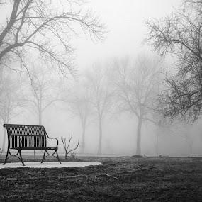 Park Bench by Drew Backues - City,  Street & Park  City Parks ( b&w, bench, park, fog, bw, pwcbenches )