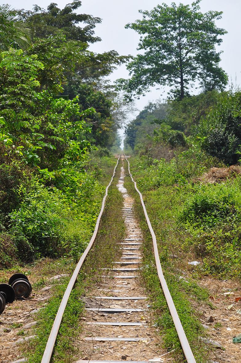 Il trenino di bambù di Cristhian Raimondi