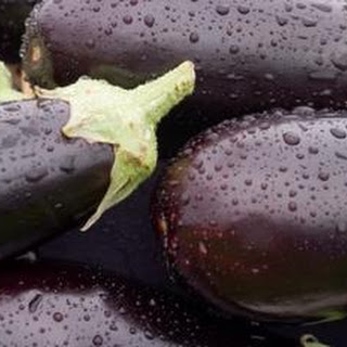 Eggplant Tomato Tapenade Recipes