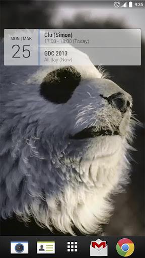 Talking Pandas 3D Live Wallpap