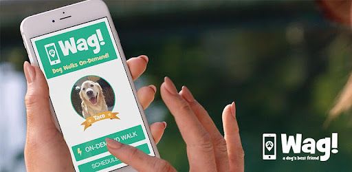 eeef86d0f3f Wag! - Instant Dog Walkers   Sitters - Apps on Google Play