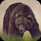 Bear Sounds icon