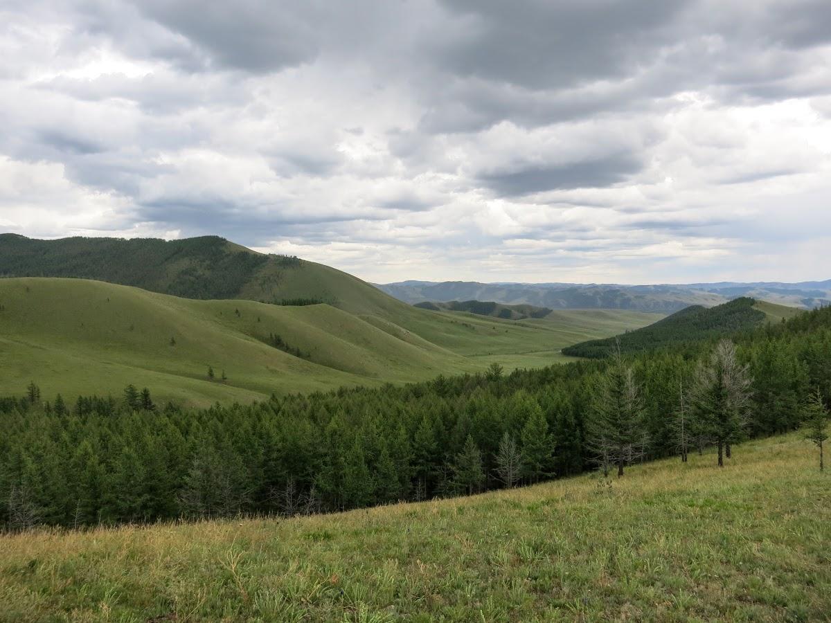Collines et vallées verdoyantes