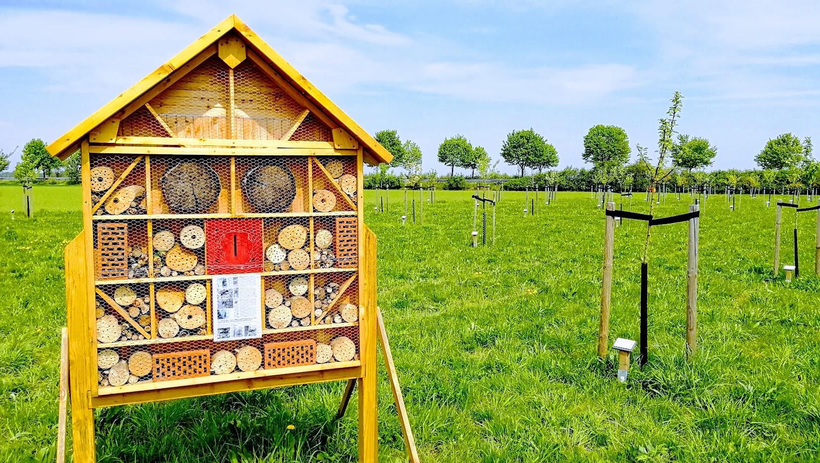 Hochzeitswiese Korschenbroich Trietbachaue Insektenhotel