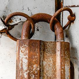 Rusty Lock by Richard Michael Lingo - Artistic Objects Other Objects ( artistic objects, door, rust, security, locks )