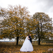 Wedding photographer Andrey Frolov (AndrVandr). Photo of 10.10.2018