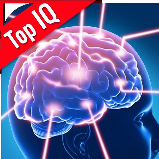 Top IQ Test