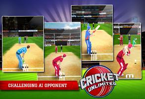 Screenshot of Cricket Unlimited