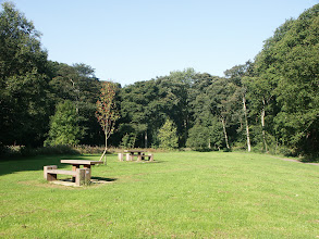 Photo: Picnic Tables in Northcliffe Wood Shipley