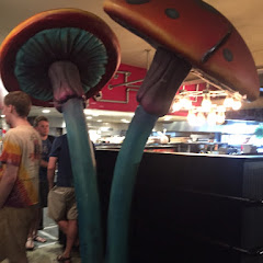 Photo from Mellow Mushroom