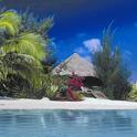 Caribbean Beach Live Wallpaper icon