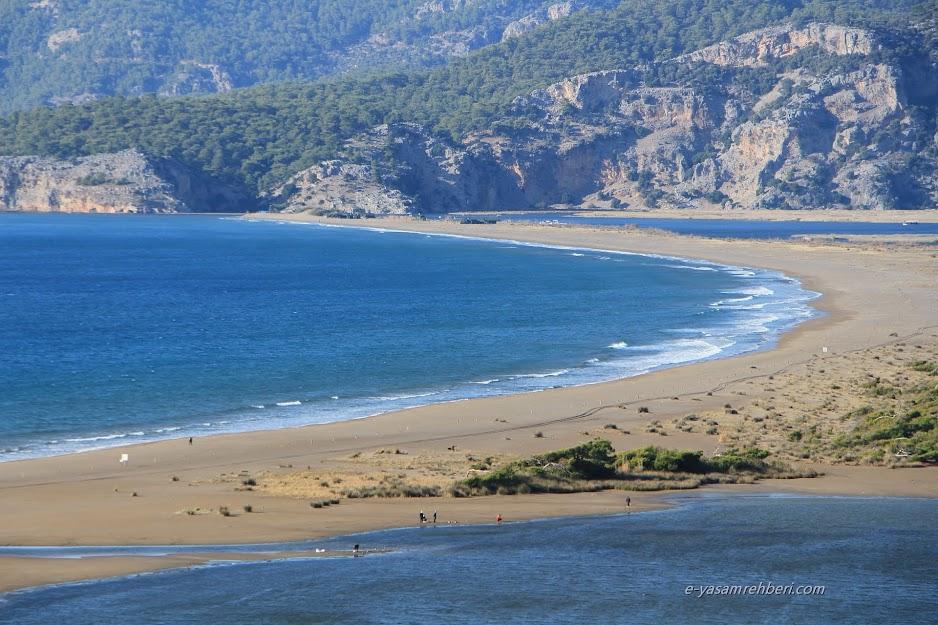 dalyan iztuzu plajı
