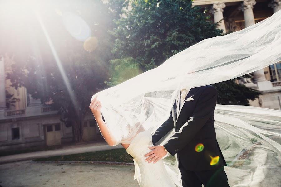 Wedding photographer Denis Osipov (SvetodenRu). Photo of 09.12.2014