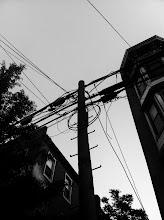 Photo: Telegraph Poles