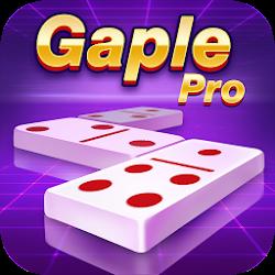 Domino Gaple Pro