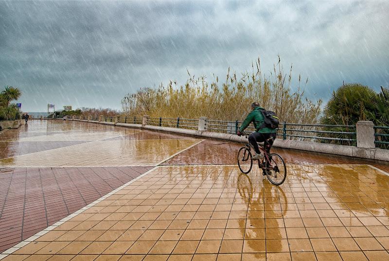 Incurante della pioggia di franca111