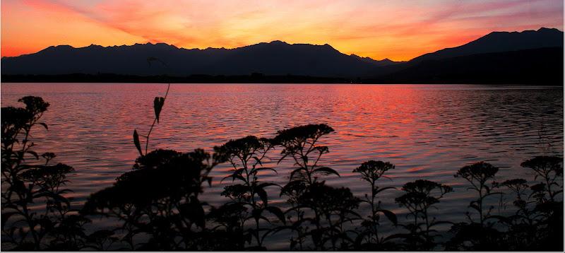 Lago di Viverone - 1/06/2020 di Andrea15