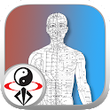 Qi Circulatory System icon