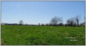 terrain à Badefols-d'Ans (24)