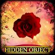 Hidden Object - Briar Rose